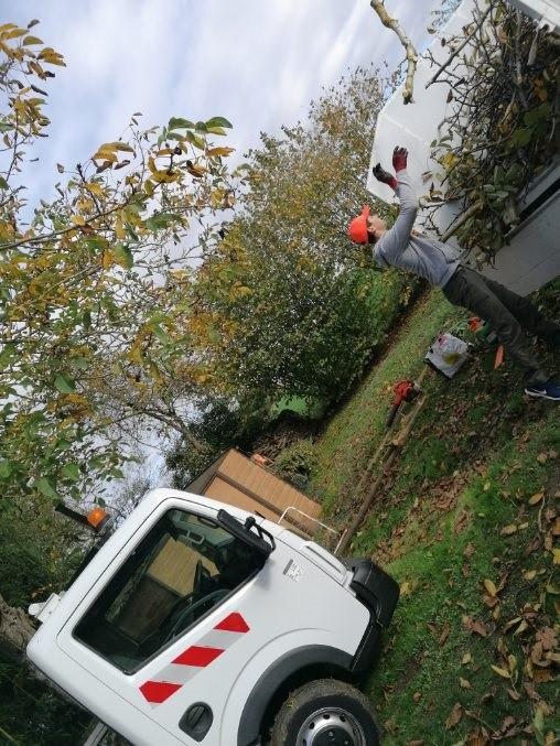 jardiniers entrain d'effectuer un nettoyage de jardin 37
